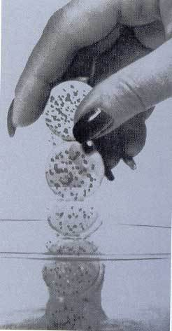 Windshield Wash Pill